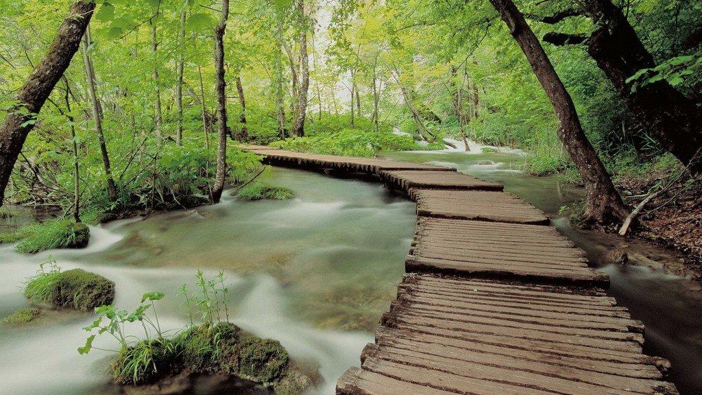 фотографии водопада, лесной водопад, красивые изображения природы, фото природы, картинки на рабочий стол, рабочий стол Windows