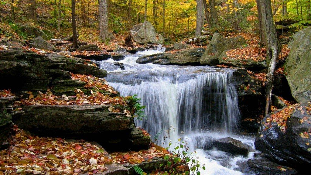 обои на рабочий стол, осенний водопад в лесу, красивые фотографии, водопад