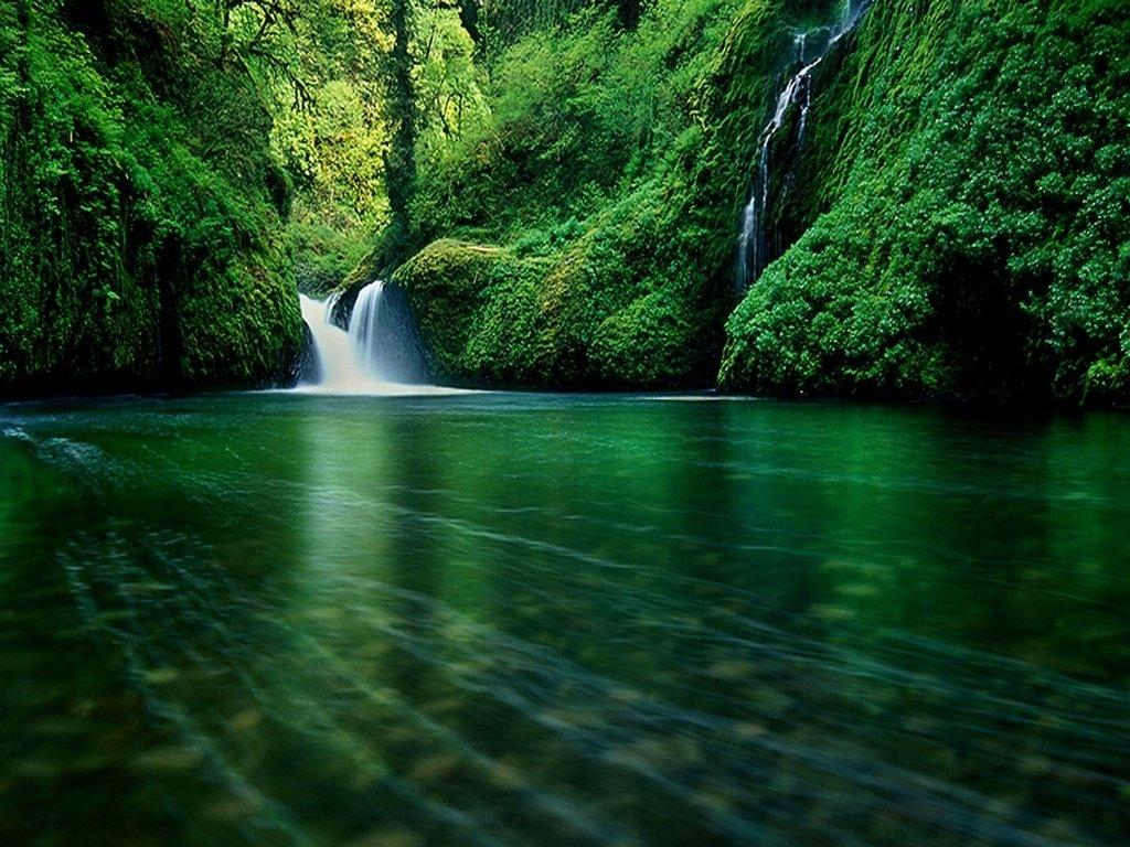 Фотографии природы красивые обои на