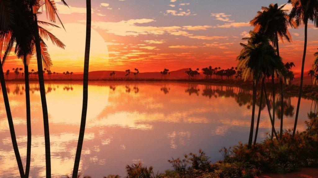 закат,обои,рабочий,стол,пальмы,вода,небо,фото