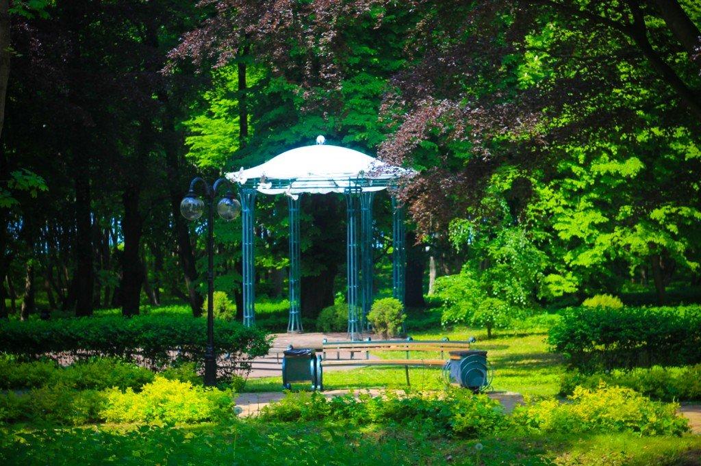 сад,парк,беккера,янтарный,калининградская,фото