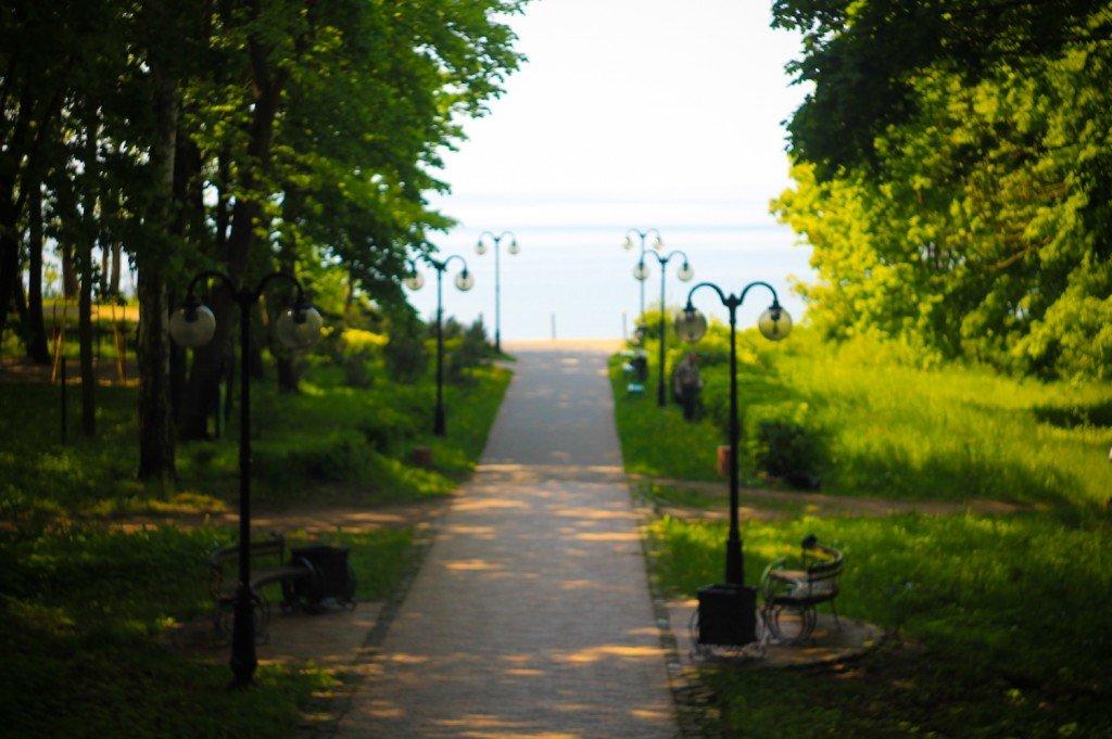 парк,фото,янтарный,море,аллея,калининградская