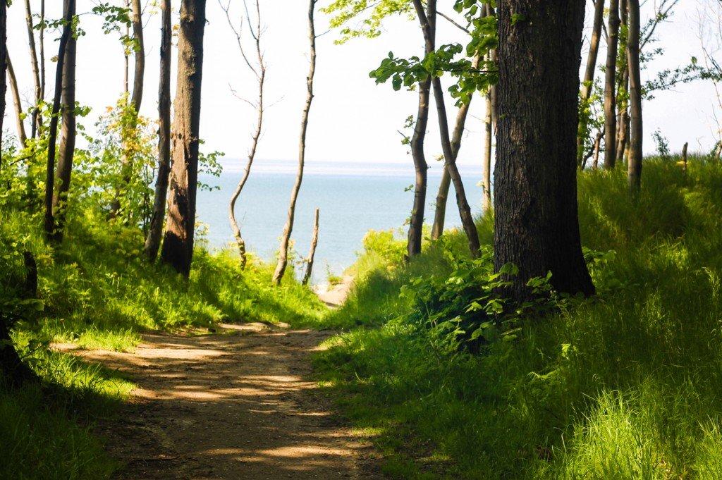 балтийское,море,берег,янтарный