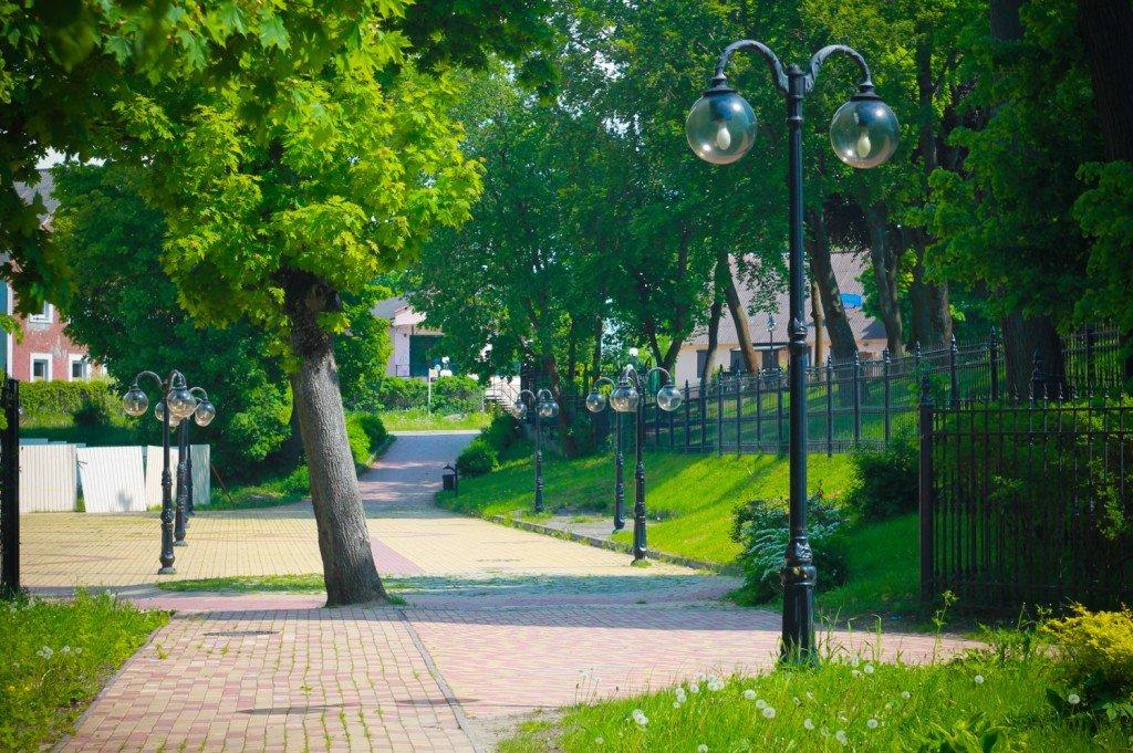 улицы,фото,янтарный,деревья