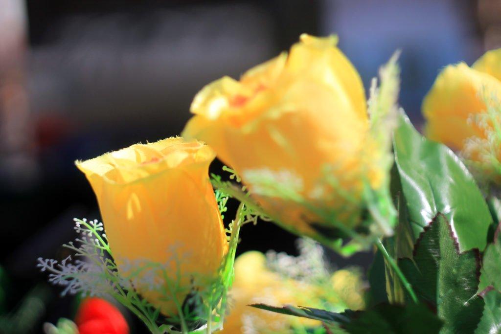цветы, искусственные, фотография